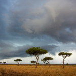 Cloudy sky in Masai Mara